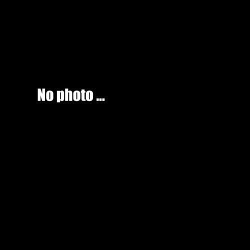 Arch Enemy und der Konzertfotograf