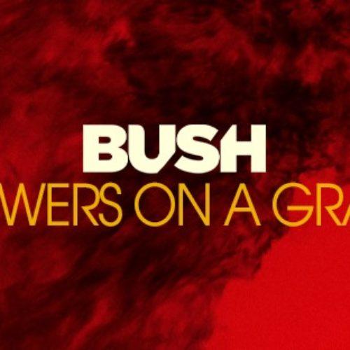 Bush – neues Album + Tour noch in diesem Jahr